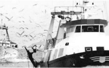 Proponen masivo cierre de pesquerías (AMP) y perspectivas sobre suministro global de pesca blanca