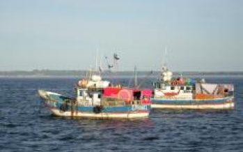 Perú – Seguridad alimentaria será tema principal en reunión de ministros de pesca del APEC en Perú
