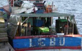 Gobierno centrará esfuerzos en combatir pesca ilegal en 2017
