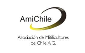 AMICHILE