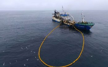 Pago de impuestos de la pesca industrial se duplica en dos años