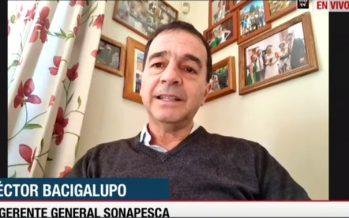 """Héctor Bacigalupo y pesca industrial: """"Nos hemos mantenido operando entre un 60% y 80%"""""""