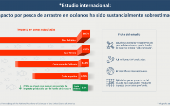 Costa chilena posee la menor huella de arrastre en los océanos