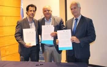 Pesqueros crean Propescado, corporación que promueve un  mayor consumo de productos del mar entre los chilenos