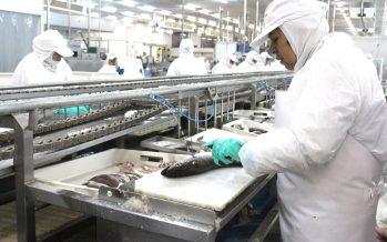 Pescadores industriales del Biobío entregarán alimentos del mar a establecimientos de larga estadía