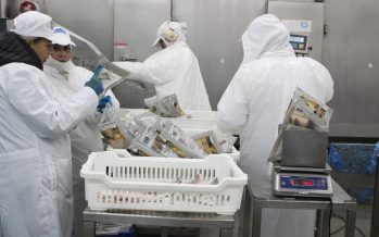 Más del 50% de los productos del mar del país son exportados como congelados o frescos enfriados