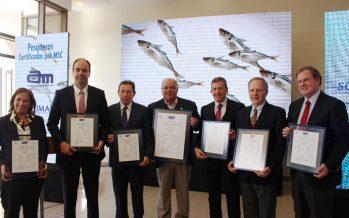 Jurel: Pesca industrial consigue certificar la principal pesquería de consumo humano de Chile bajo el estricto estándar internacional MSC