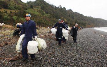 Limpieza de playa en Detif arrojó más de 20 toneladas de basura