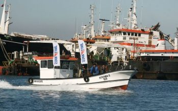 Presentan innovadora embarcación para la pesca de jibia