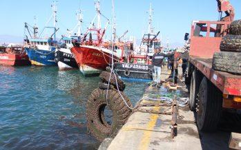 Estudiantes y buzos limpian fondo marino y playas de Coquimbo