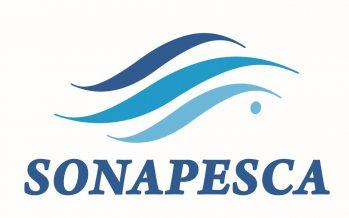 Declaración de Sonapesca sobre proyecto de ley que prohíbe la pesca de arrastre en la merluza común