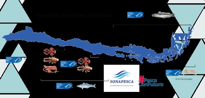Mapa certificacion industrial Chile web sonapesca