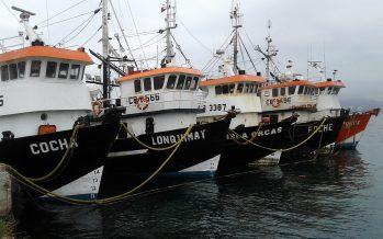 """Pescadores artesanales e industriales forman la """"Integración Pesquera de la Cuarta Región"""""""