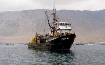 Desembarques pesqueros marcan su mejor registro en últimos cinco años