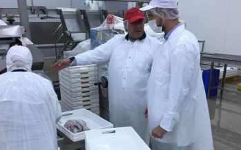 Empresas de gremios de Sonapesca se capacitan en normativa para exportar a Brasil