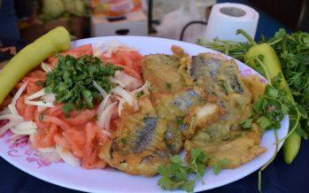 Ferias de Puente Alto regalaron 30.000 porciones de Merluza