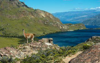 Programa de apoyo al desarrollo regional y turístico de Friosur