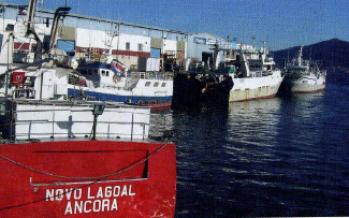 Los retos inmediatos de la industria pesquera